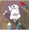 Puppy cute rest sleep on the floor and owner vector image
