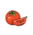 tomato on white background vector image vector image