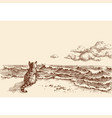 a cat on beach watching sea hand drawing vector image vector image