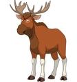 Adult funny elk vector image vector image