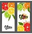 Banners with citrus fruits slices Mix of lemon