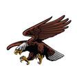 eagle strike vector image vector image