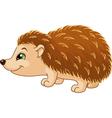 Hedgehog vector image vector image