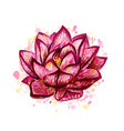 lotus flower isolated on white hand drawn sketch vector image