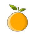 mandarin icon on white vector image vector image