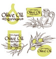 olive branches and bottles with oil contour vector image vector image
