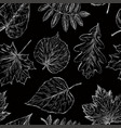 pattern of the fall leaves sketches vector image