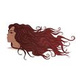 Profile of African American girl with long flowing vector image vector image