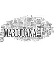 why marijuana should be legal text word cloud vector image vector image