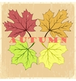 autumn hand drawn leaves vector image