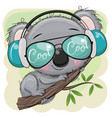 cartoon koala is sitting on a tree vector image vector image