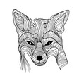 fox of wires vector image