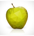 geometric triangles pattern of apple vector image