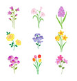 hand drawn easter spring flowers vector image