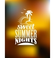 Sweet Summer Nights banner vector image vector image