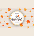 thanksgiving be thankful calligraphy and falling vector image vector image