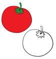 tomato in color and without color in outline vector image vector image