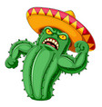 a cactus angry with sombrero vector image