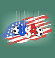 banner the inscription usa vector image vector image