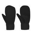 black winter gloves vector image vector image