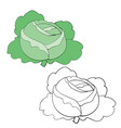 cabbage in color and without color in outline vector image vector image