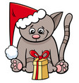 cat with xmas present cartoon vector image vector image