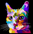 colorful cat face in pop art style vector image vector image