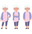 fashionable gray haired mature woman with glasses vector image vector image