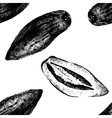 Hand drawn pepino melon seamless vector image vector image