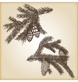 Hand drawn rustic vintage design elements vector image vector image