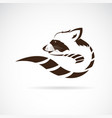 raccoon design on white background wild animals vector image