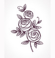 roses stylized flower bouquet vector image vector image