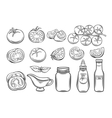 Set hand drawn tomato and sauce vector image vector image