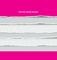 set of ripped and torn paper stripes texture of vector image vector image