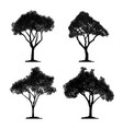 silhouette tree set and icon isolated black vector image vector image