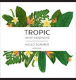 template with tropic plants and flowers and place vector image vector image