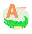 zoo abc letter with cute alligator cartoon vector image vector image