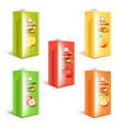 juice box packaging 3d realistic set vector image