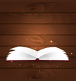 book poster open book with mystic bright light on vector image vector image