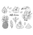 hello summer tropic set fruit flower food vector image