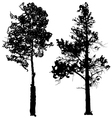 Tree Silhouette Ink Graphic vector image vector image