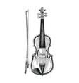 violin hand sketch vintage style vector image vector image