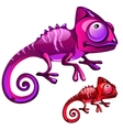 Two cartoon iguanas in red and purple color vector image