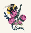 beautiful botanical fashion bumblebee vector image vector image