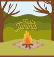 colorful poster festa junina with background vector image