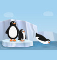 penguin family concept banner cartoon style vector image vector image