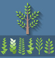 set different leave branch for decoration vector image vector image