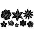set silhouettes flowers vector image