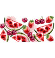 watermelon and cherry watercolor texture vector image vector image