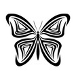 butterfly tribal tatto animal creativity design vector image